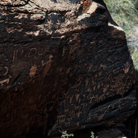 Petroglyphs of Petrified Forest N.P. 1